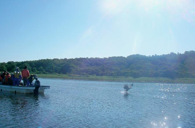 クッチャロ湖 漁業体験