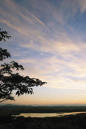 絶景パノラマウォーキング写真